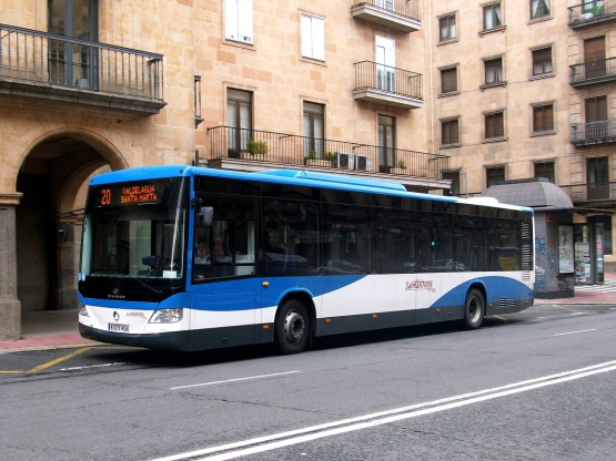 bus urbano santa